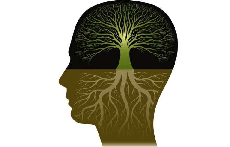 Develop An Abundance Mindset