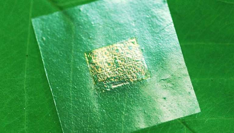 Biodegradable Semiconductors Could Help Our E-Waste Problem