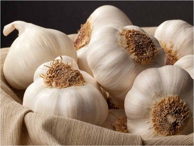 Health Benefits and Uses For Garlic