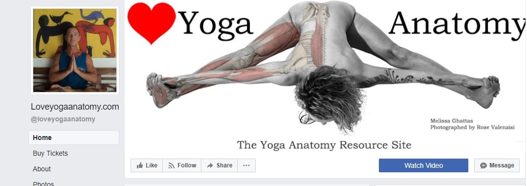 Love Yoga Anatomy