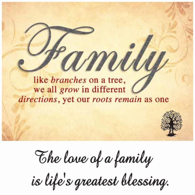 Zig Ziglar Quotes Lovely Quotes About Family In Spanish 44 Quotes Table For Change