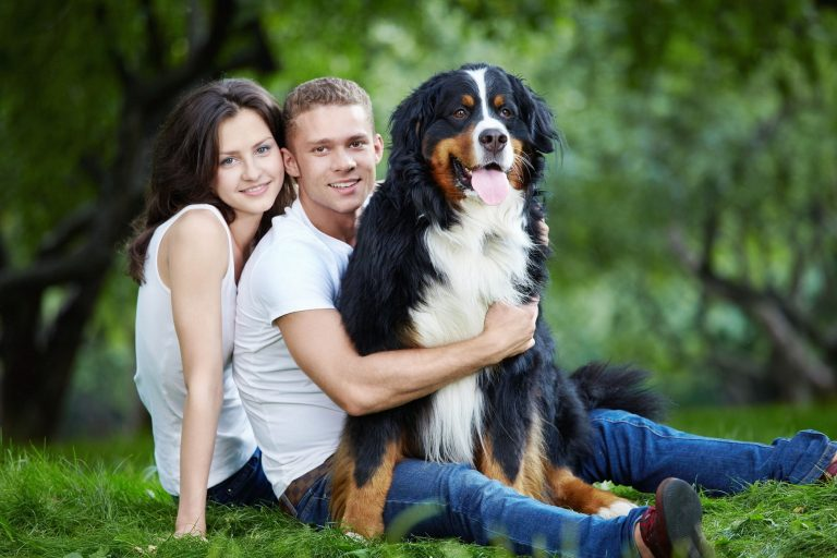Pets and Their Spiritual Impact on Our Lives